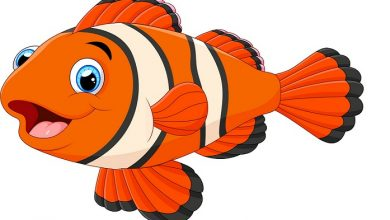 Photo of قصة السمكة والحرية من قصص الأطفال الجميلة