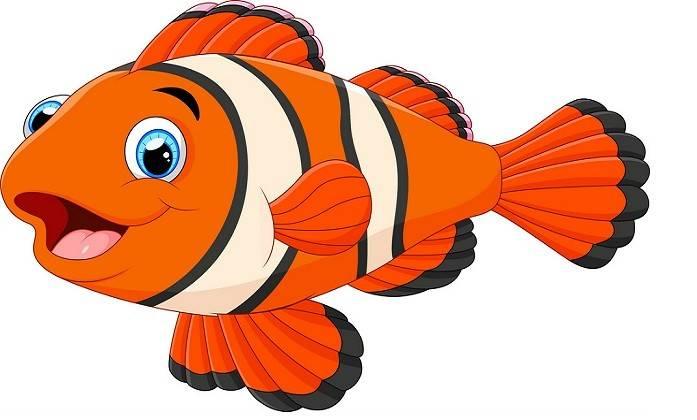 قصة السمكة والحرية