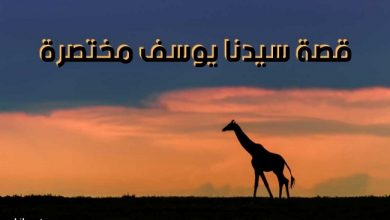 Photo of قصة سيدنا يوسف عليه السلام مختصرة| من قصص الأنبياء في القراَن